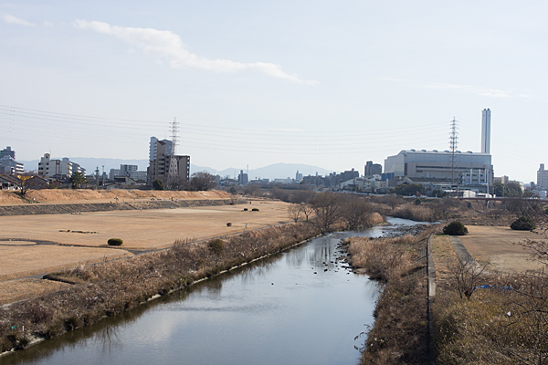矢田川河川敷冬景色