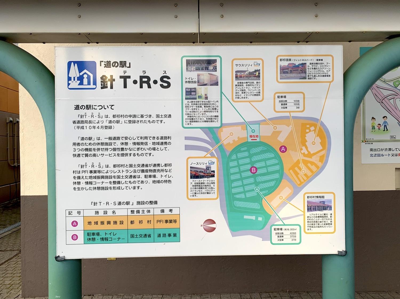 IMG-7975.jpg