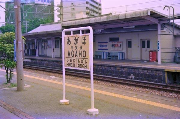 0853_08n_t.jpg
