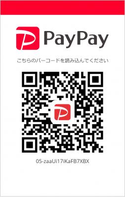 pay pay QR