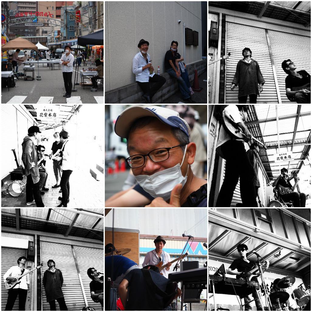 collage_photocat1.jpg