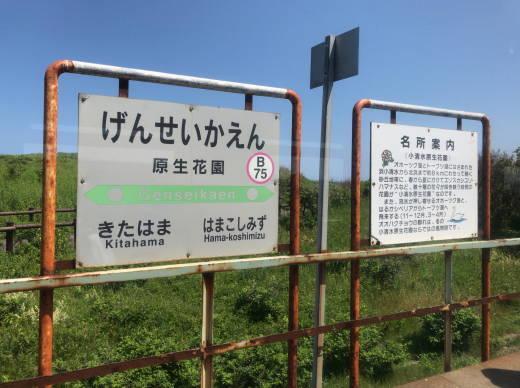 網走パークゴルフ遠征2020・2日目 (12)