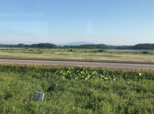 網走パークゴルフ遠征2020・2日目 (43)