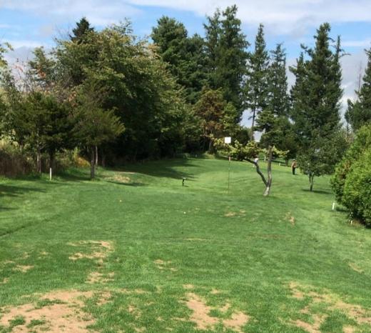 東神楽森林公園パークゴルフ場いちい8 (5)