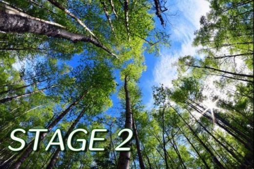 架空みんゴル2020冬_stage2_01