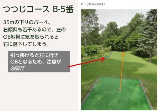 パークゴルフ名物ホール_つつじコースB-5番 (1)