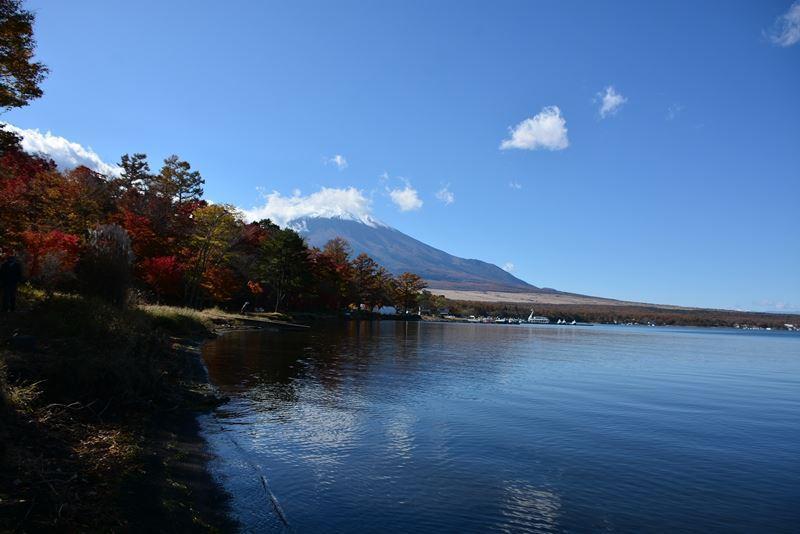 山中湖紅葉~z (8)