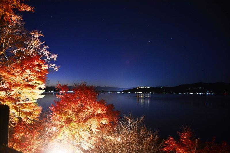 山中湖ライトアップ (5)
