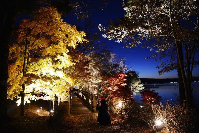 山中湖ライトアップ (6)