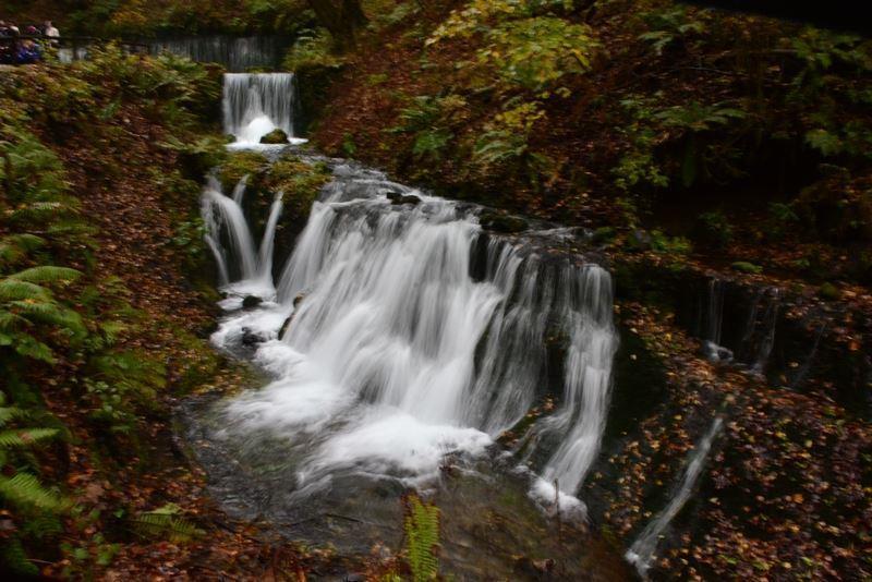 白糸の滝~w (7)