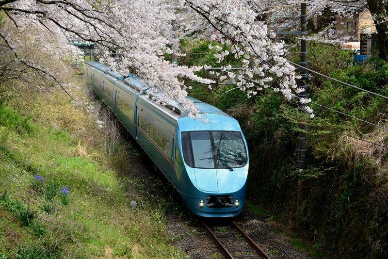 山北の桜 (5)