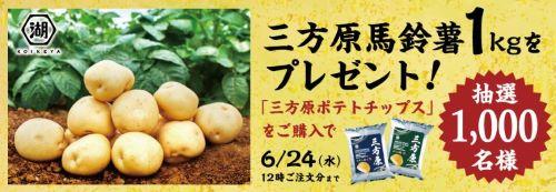 mikataharaCP1_pc1ccccc.jpg