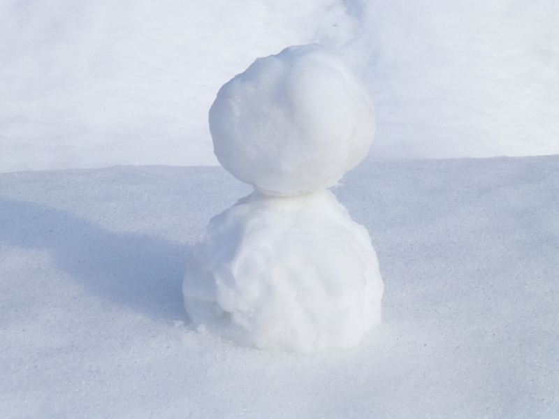 4316001_m_20210121_snow.png
