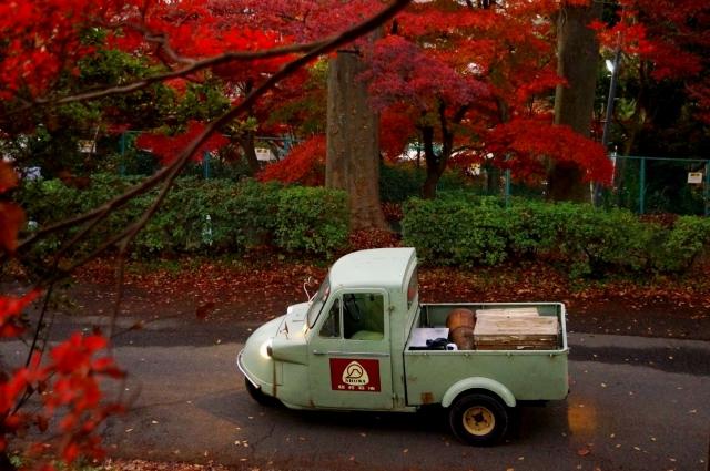 立川 台の坂の紅葉と ミゼット