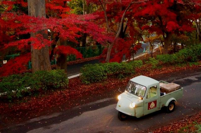 立川 台の坂の紅葉とオート三輪ミゼット