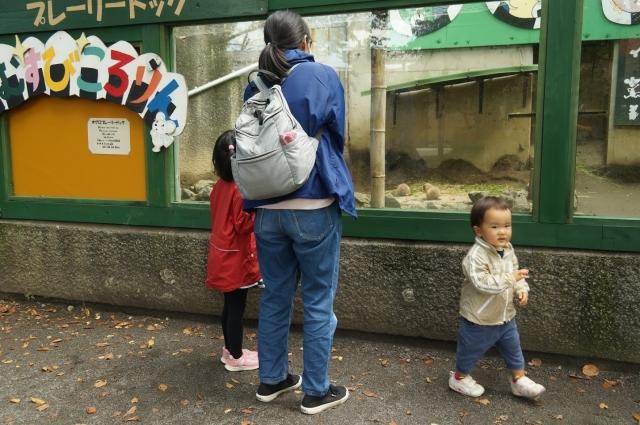 羽村動物公園で楽しむ