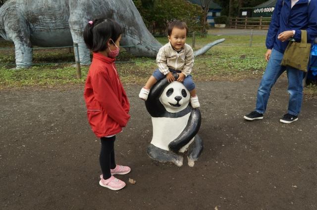 コンクリパンダに乗る息子
