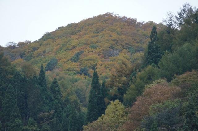 山はすっかり秋の風情