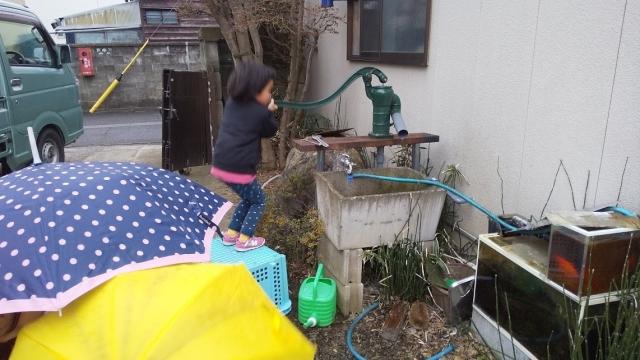 娘、初めて家の井戸の水を汲む