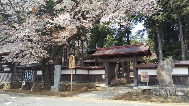 廣園禅寺の桜