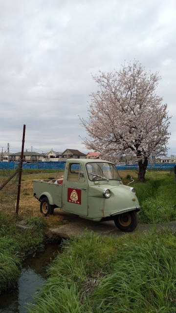 桜と石橋と小川とミゼット