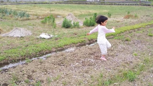 田んぼに水を入れ始めました!