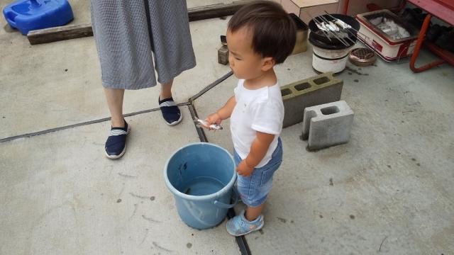 ちょっと散歩、用水に魚を放しに行きます
