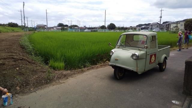 浅川沿いの田んぼにて