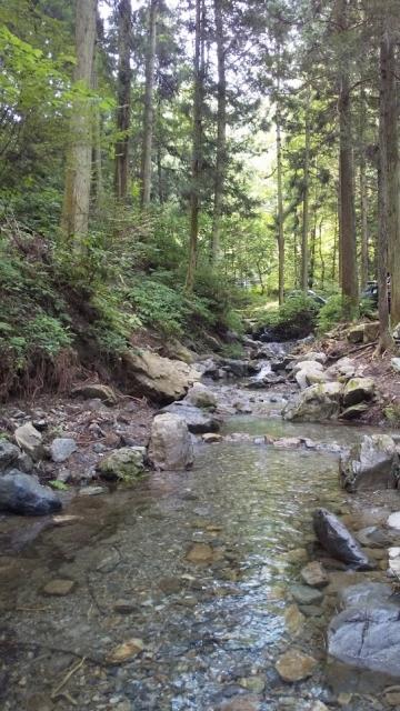陣馬の渓流 案下川の支流