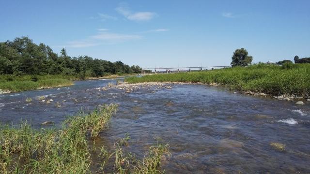 八高線の鉄橋の少し上流、多摩川