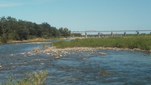 八高線の鉄橋の少し上流の多摩川