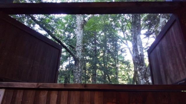 ひらゆの森 一番奥のコテージの風呂から眺める原生林