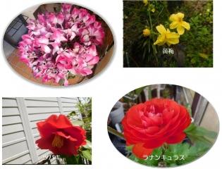 0330niwabanaba1.jpg