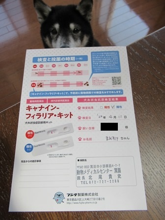2020狂犬病予防注射13