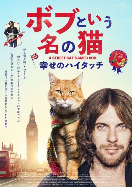 ボブという名の猫1