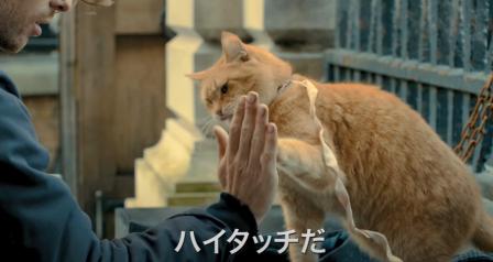 ボブという名の猫3