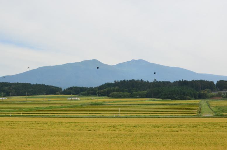 9/15-19 北海道&東日本パスの旅 その5(酒田→秋田) 羽越本線、絶景かな(3)