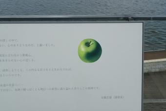 安藤忠雄展02