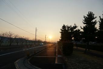三本松の朝日1