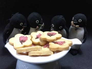 20210330-さくらクッキー (9)