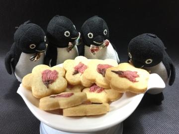20210330-さくらクッキー (11)