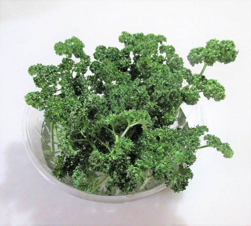 200321parsley2