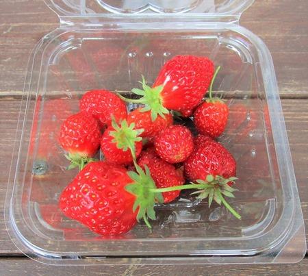 200528strawberry