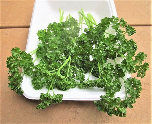 200726parsley2