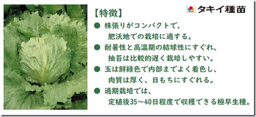 210320tamaretasu_gokuwase-sisuko