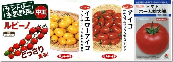tomato-4nae