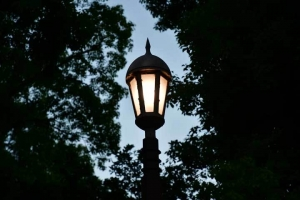 Pole Light