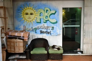 Cat at ABC Backpackers Hostel Singapore