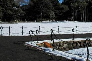 日比谷公園 芝生一面の雪と柵の外に飛び込む茶トラ猫