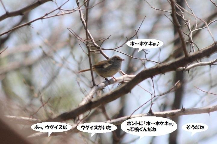 IMG_0021 - コピー - コピー